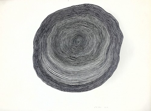 Exhibition: Organized Abstraction — a Group Show featuring Seven Artists, Work: Stewart Helm Black Tree Form, Continuous Line Drawing, 2019